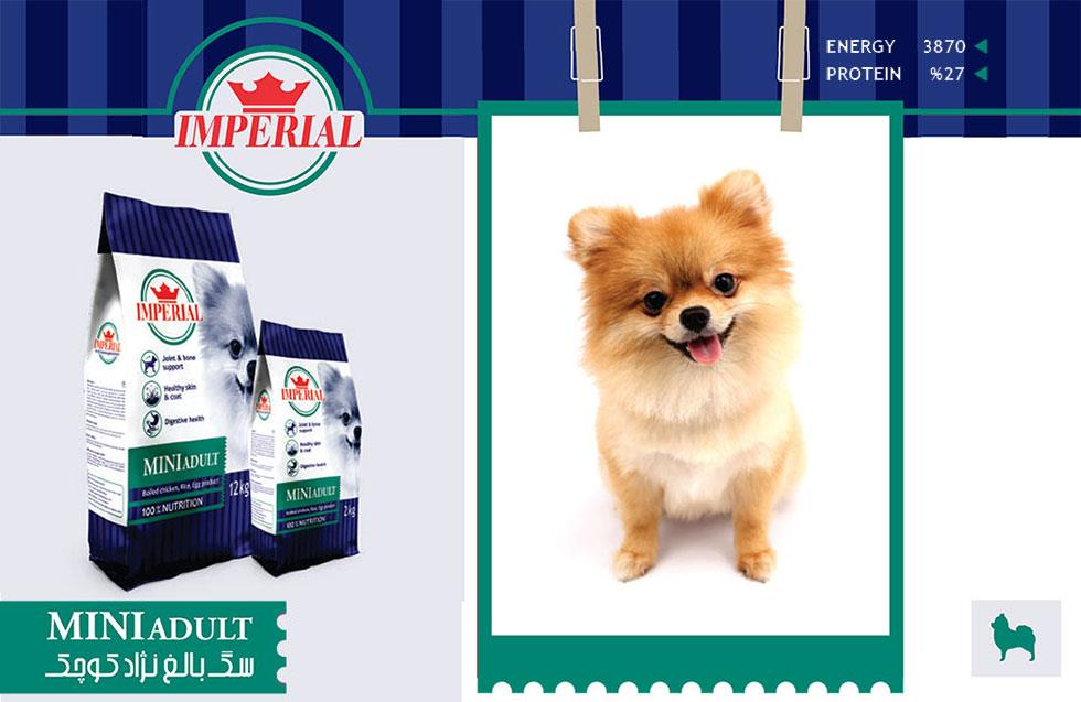 غذای سگ بالغ نژاد کوچک امپریال