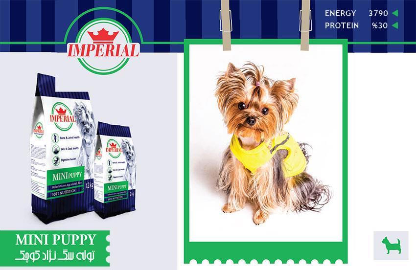 غذای توله سگ نژاد کوچک امپریال