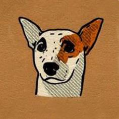 گوشهای برافراشته سگ
