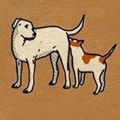 پشت سگ دیگری را بو کردن