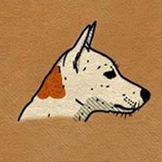 رفتار سگ