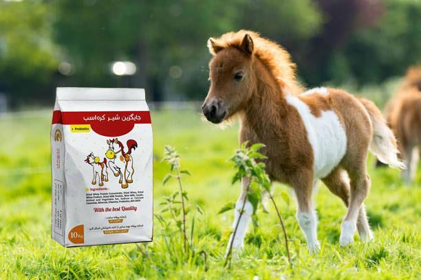 شیرخشک مخصوص اسب