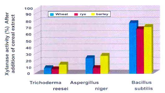 کمترین حساسیت نسبت به بازدارندههای موجود در غلات (گندم)