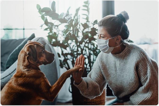 هرآنچه درباره ویروس کرونا و حیوانات خانگی باید بدانید