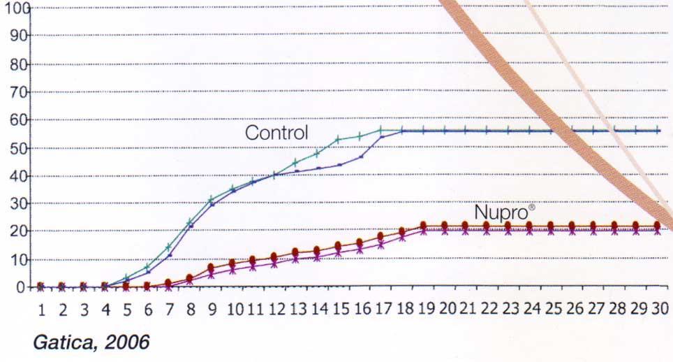 درصد تلفات تصاعدی ناشی از Y.ruckeri