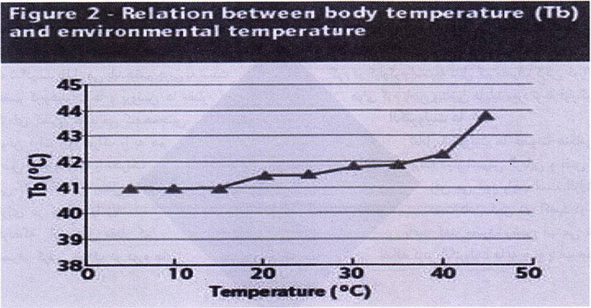 جدول 3- رابطه بین دمای بدن و دمای محیط