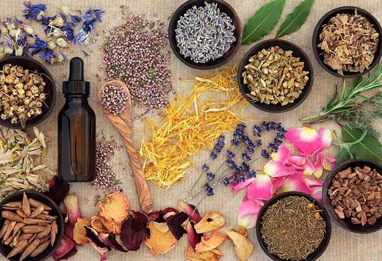 مواد مؤثر گیاهی موثر بر مکانیزم های مختلف بدن حیوانات