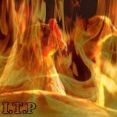استرس گرمایی مرز اقتصادی صنعت مرغداری