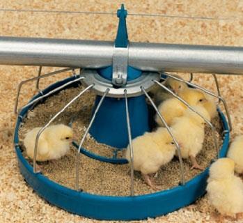 محدودیت خوراک، روشی نوین در کنترل ناهنجاریهای متابولیک در جوجههای گوشتی