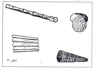 انواع صافی در استخر پرورش ماهی