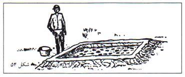 مشخصات حوضچه ی بچه ماهی ها