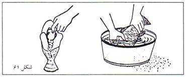 خالی کردن شکم ماهی