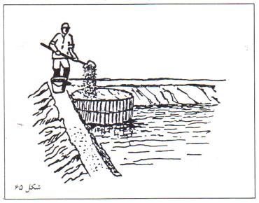 قراردادن کود در محوطه استخر