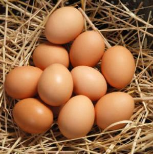 تخم مرغ لاری