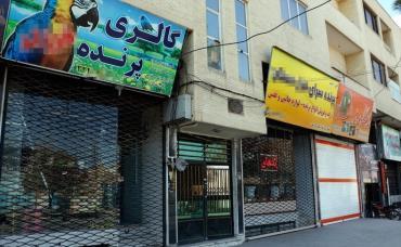 آنفولانزای مرغی در کرمان