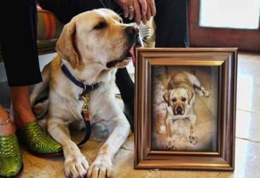 سگ شبیه سازی شده