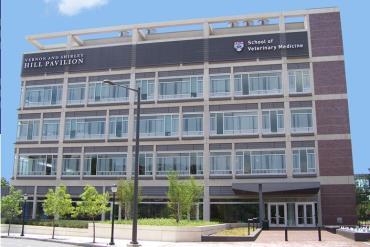 دانشگاه دامپزشکی پنسیلونیا