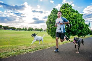 ورزش با سگ