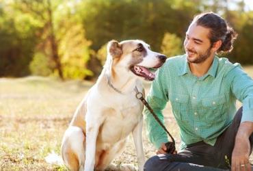 درمان افسردگی با سگ
