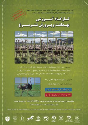 بهداشت و پرورش شترمرغ