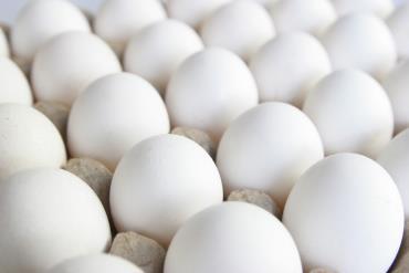 دلایل افزایش قیمت تخممرغ