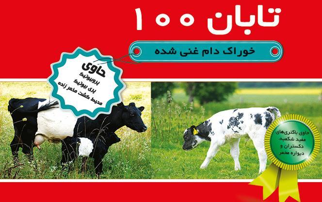 خوراک دام غنی شده تابان 100
