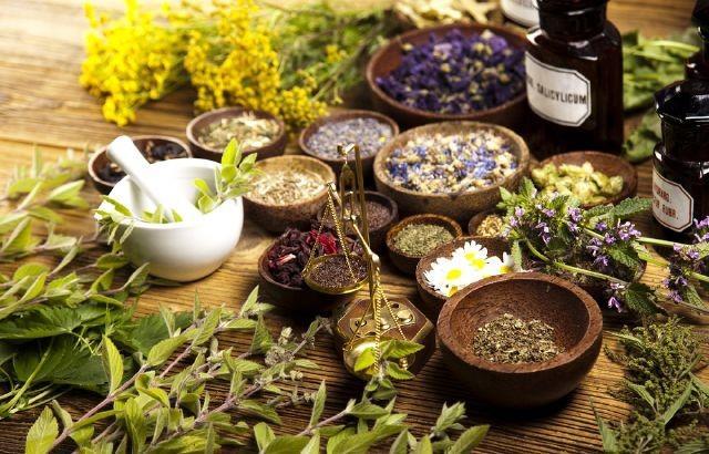 فیتوبیوتیکها گیاهان دارویی