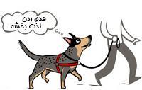 تمرین با سگ