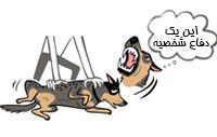 دفاع سگ از خودش