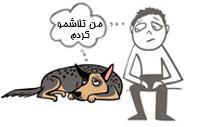 آموزش نادرست سگ