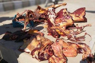 تشخیص گوشت الاغ در گوشت چرخشده