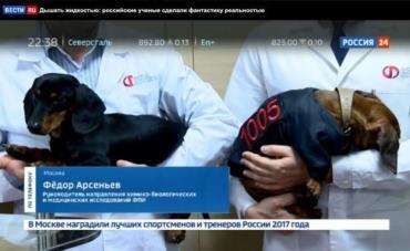سگ آزاری در روسیه