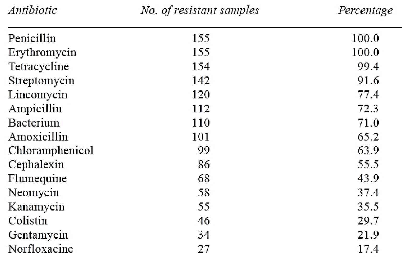 مقاومت آنتیبیوتیکی باکتری ایکلای در توله خوک