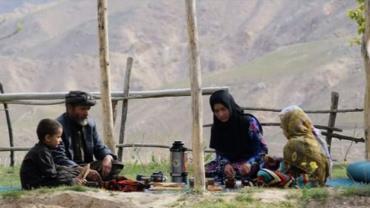 زنبورداری دختر افغان