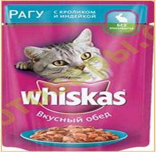 سوپ گربه
