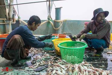 چینیها در دریای جنوب چه میکنند؟