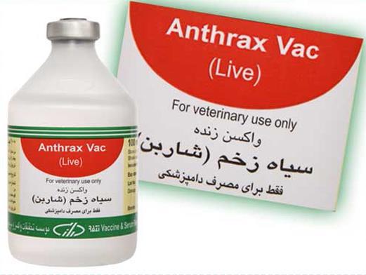 واکسن شاربن، سیاه زخم