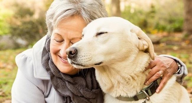 بهترین نژاد سگ برای افراد مضطرب
