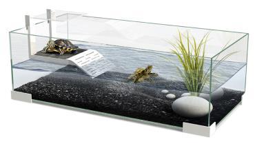 ساخت تراریوم لاکپشت
