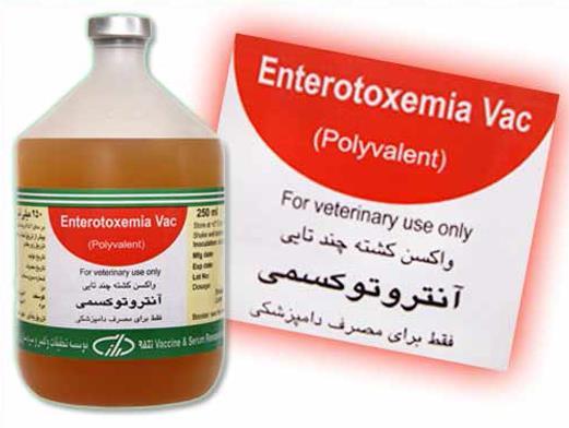 واکسن چهارظرفیتی آنترو توکسمی