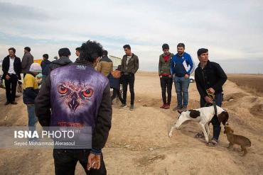 جمعه بازار پرندگان مشهد