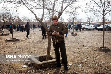 خروس در بازار پرندگان مشهد