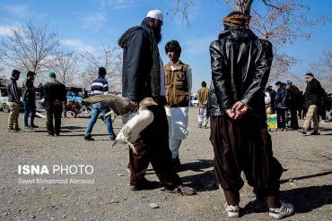 مرغابی در بازار پرندگان مشهد
