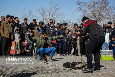 ماربازی در بازار پرندگان مشهد