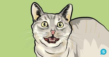 خیره شدن گربه با دهانی باز