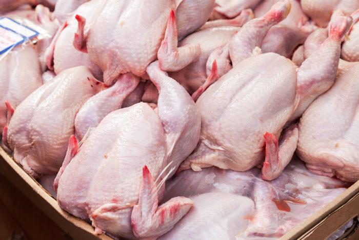 بهتر ساختن کیفیت گوشت مرغ