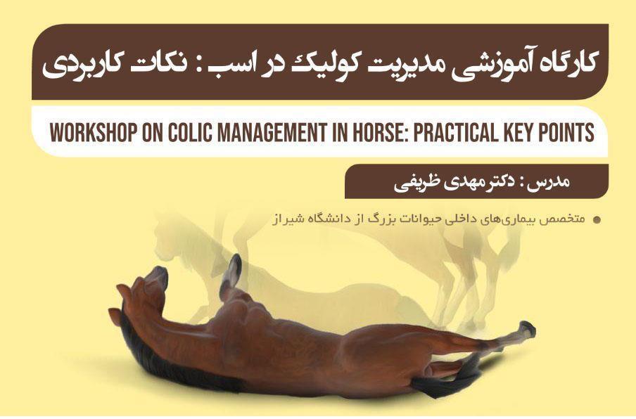 کارگاه آموزشی مدیریت کولیک اسب، نکات کاربردی