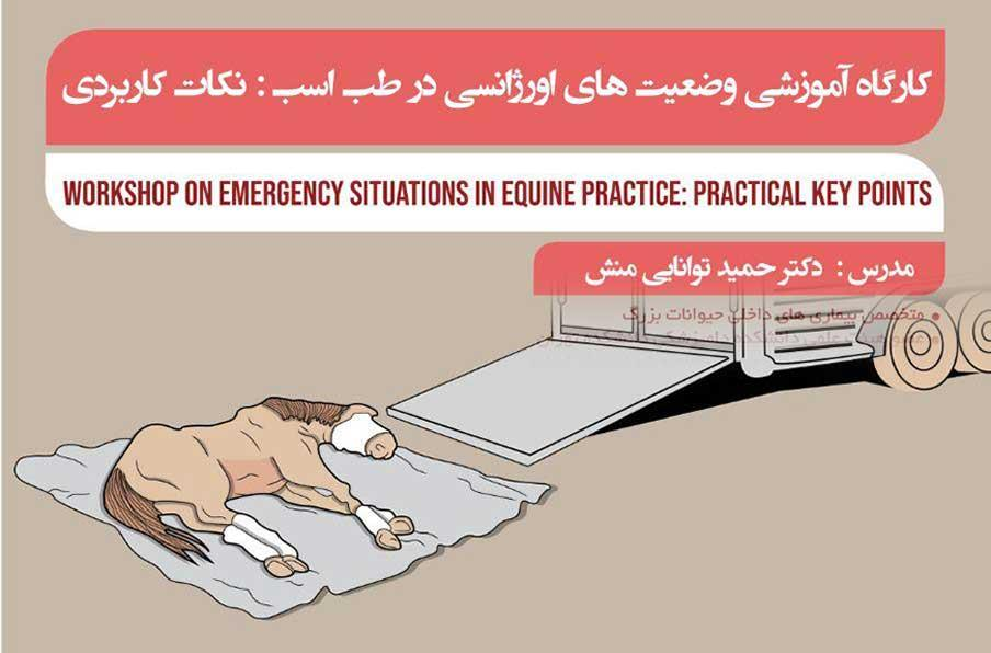کارگاه آموزشی وضعیت های اورژانسی در طب اسب، نکات کاربردی