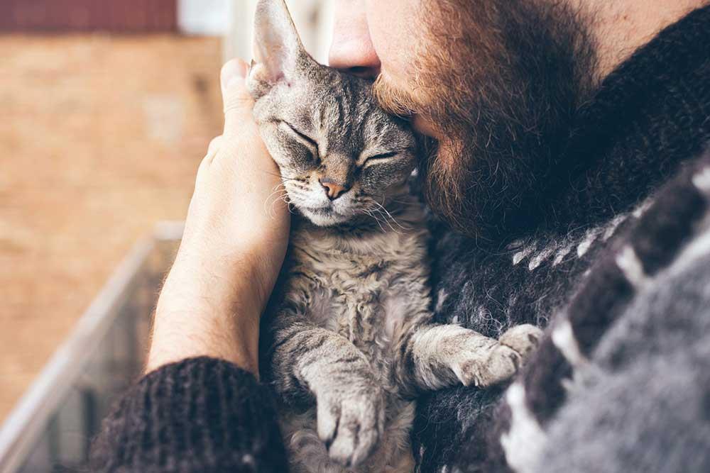 انجام تست کرونا برای حیوانات خانگی