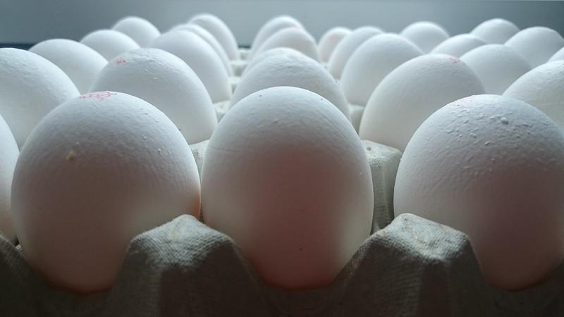 مصرف اسیدیفایرهای دستگاه گوارش جهت افزایش کیفیت پوسته تخممرغ